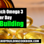 how much omega 3 per day bodybuilding