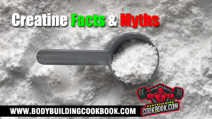 creatine facts and myths