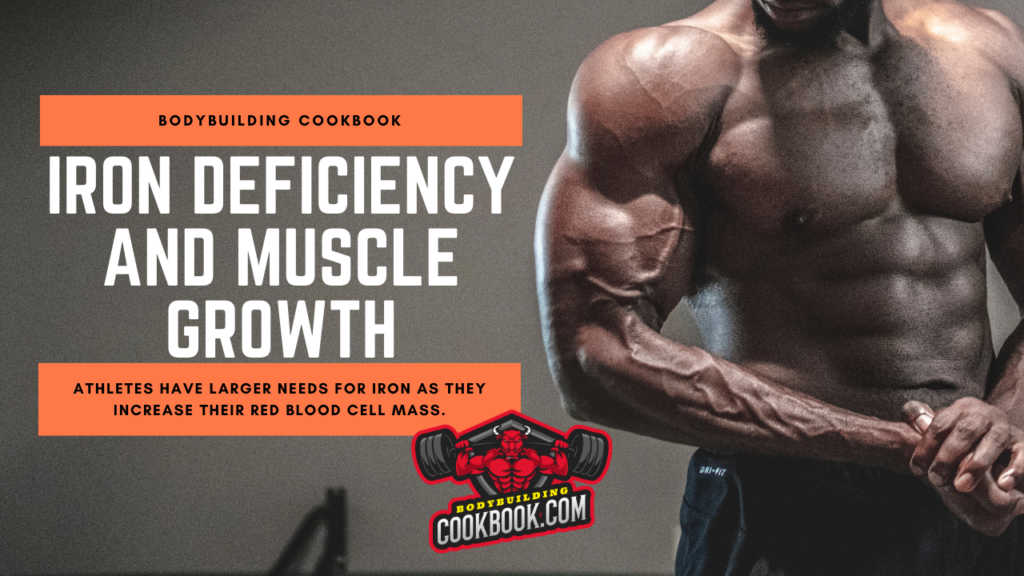 iron deficiency and muscle growth